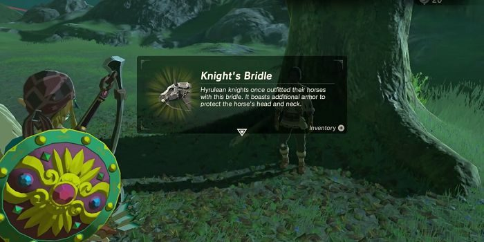 Botw Best Armor