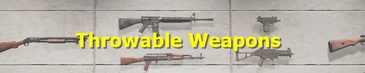 PUBG Thrown Weapons