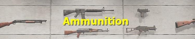 PUBG Ammunition List