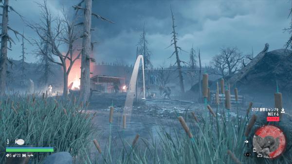Bare Bay Ambush Camp