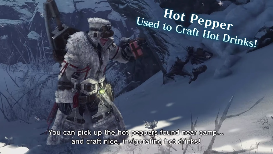 MHW Iceborne Tour with the Handler