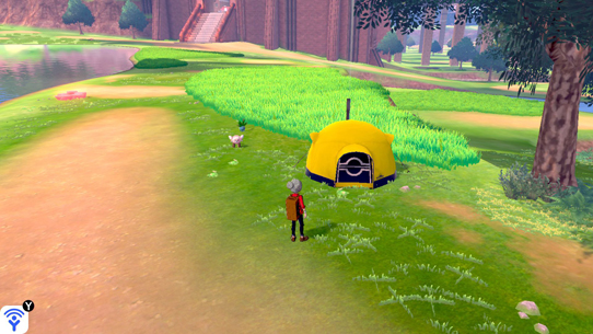 Pokemon Camp with Four Players