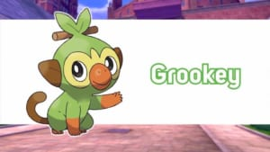 Pokemon Sword and Shield - Grookey