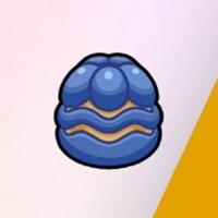 Pokemon Sword and Shield - Ganlon Berry