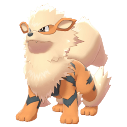 Pokemon Sword and Shield - Arcanine