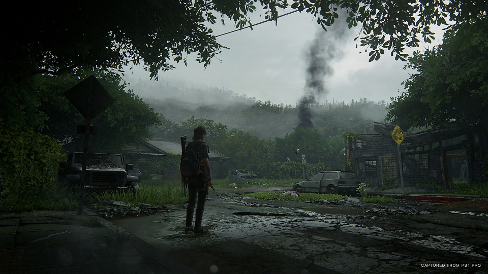 The Last of Us 2 - New Game Plus