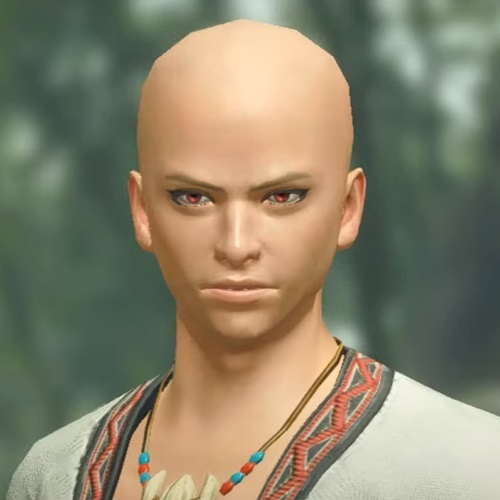 Monster Hunter Rise - Male Character Hair Style 23