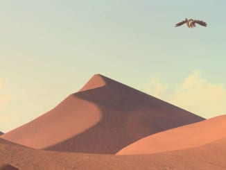 New Pokemon Snap - Lental Region Desert