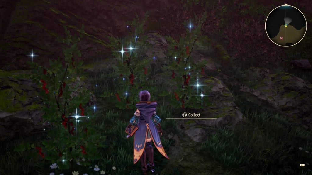 Tales of Arise - Plant Location 7