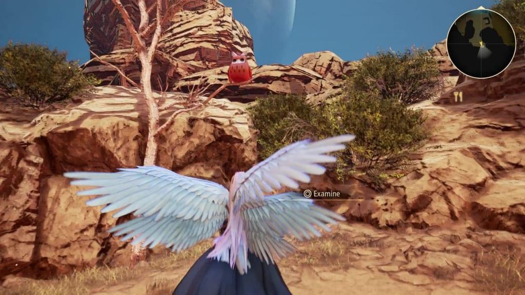 Tales of Arise - Dahnan Owl Location 3