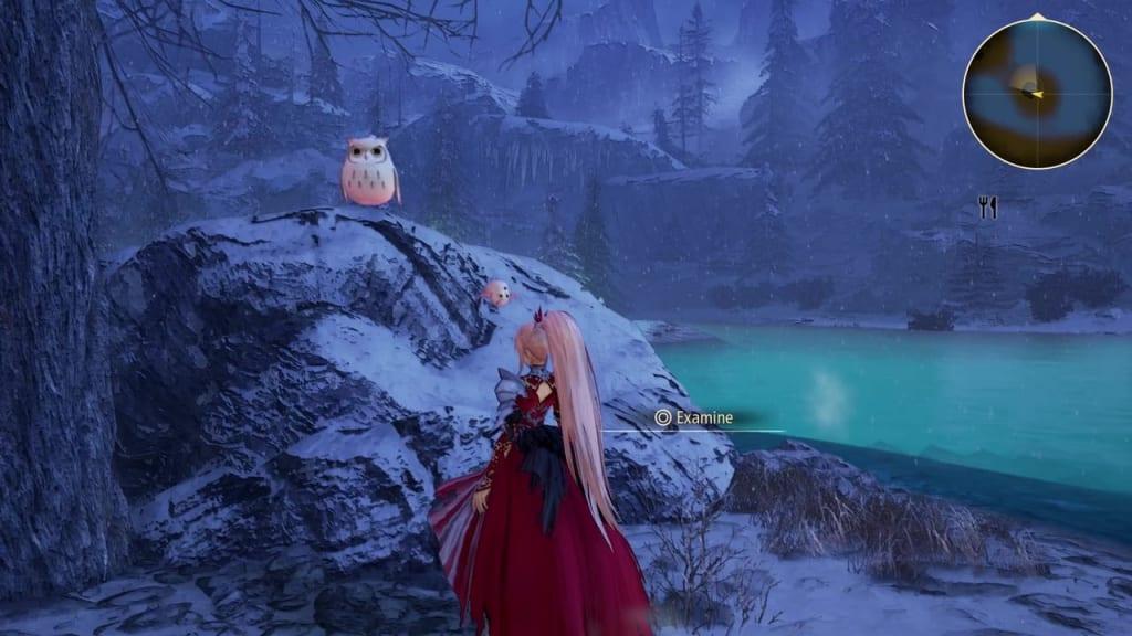 Tales of Arise - Dahnan Owl Location 12