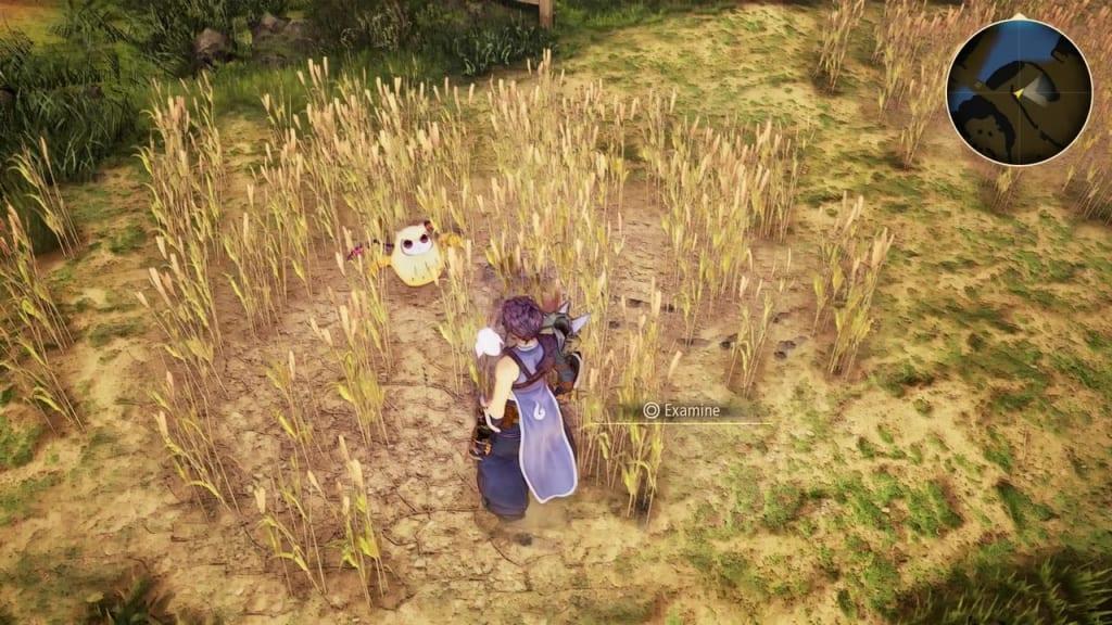 Tales of Arise - Dahnan Owl Location 17